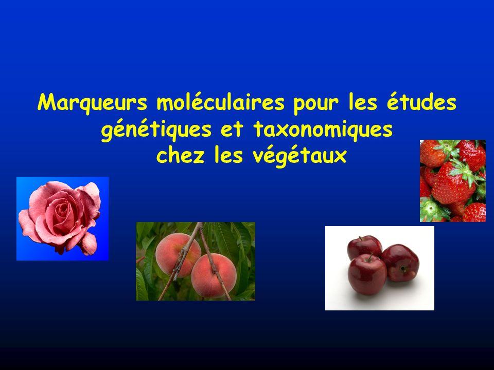 Marqueurs moléculaires pour les études génétiques et taxonomiques