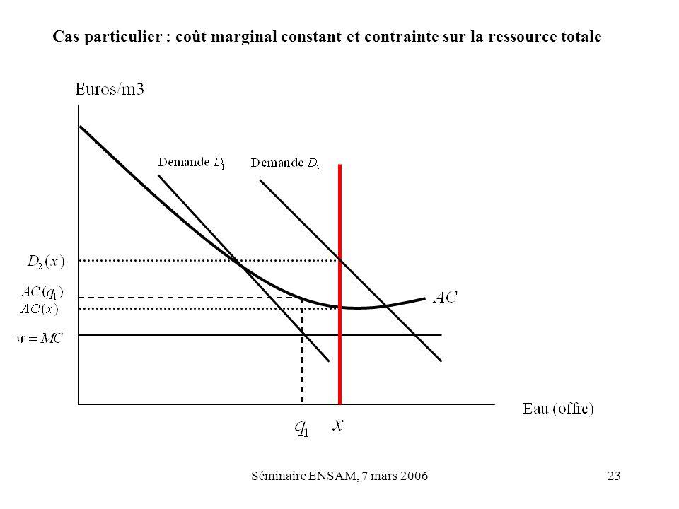 Cas particulier : coût marginal constant et contrainte sur la ressource totale