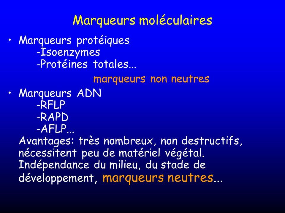 Marqueurs moléculaires