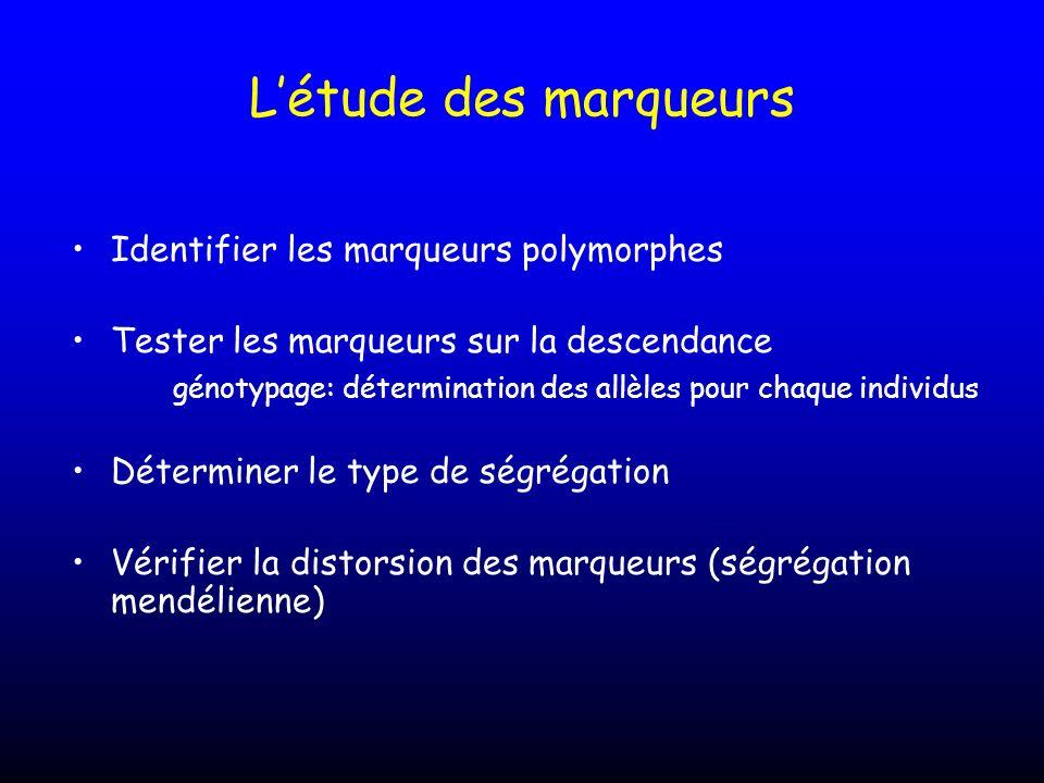 L'étude des marqueurs Identifier les marqueurs polymorphes