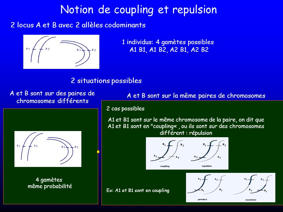 Notion de coupling et repulsion
