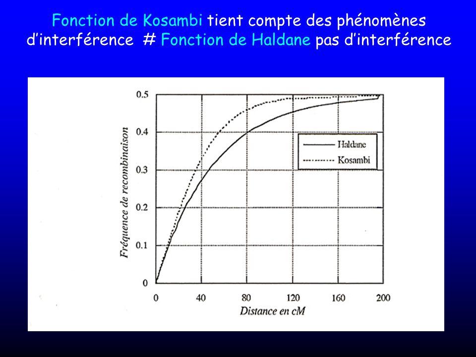 Fonction de Kosambi tient compte des phénomènes d'interférence # Fonction de Haldane pas d'interférence