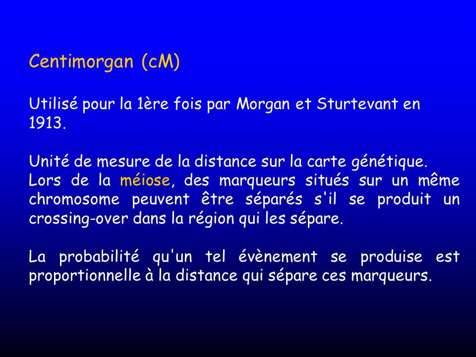 Centimorgan (cM) Utilisé pour la 1ère fois par Morgan et Sturtevant en 1913. Unité de mesure de la distance sur la carte génétique.