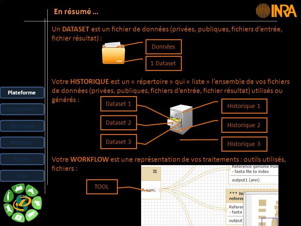 En résumé … Un DATASET est un fichier de données (privées, publiques, fichiers d'entrée, fichier résultat) :