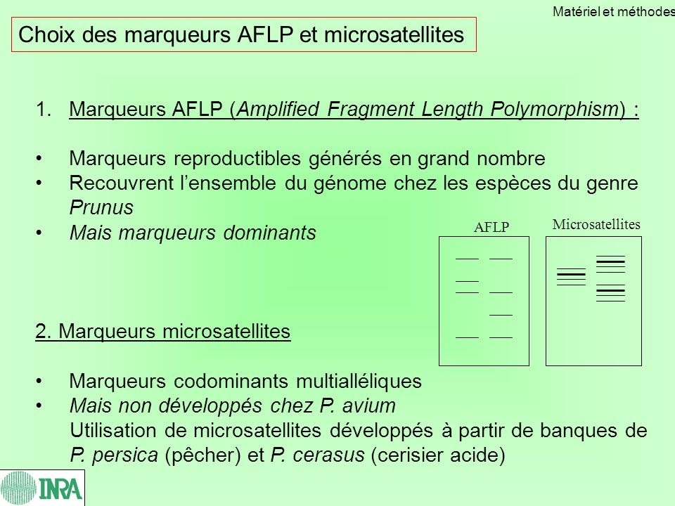 Choix des marqueurs AFLP et microsatellites