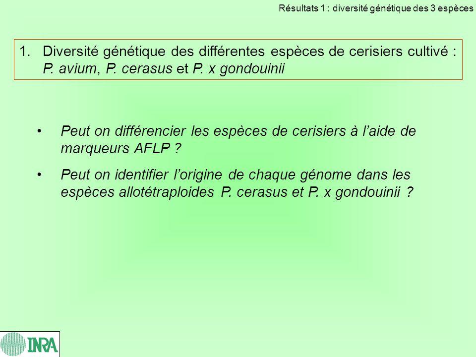 Résultats 1 : diversité génétique des 3 espèces
