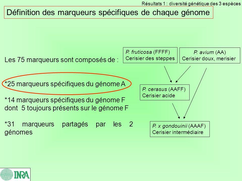 Définition des marqueurs spécifiques de chaque génome
