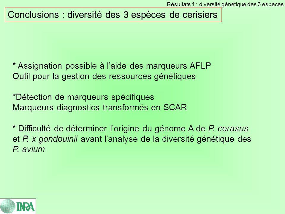 Conclusions : diversité des 3 espèces de cerisiers