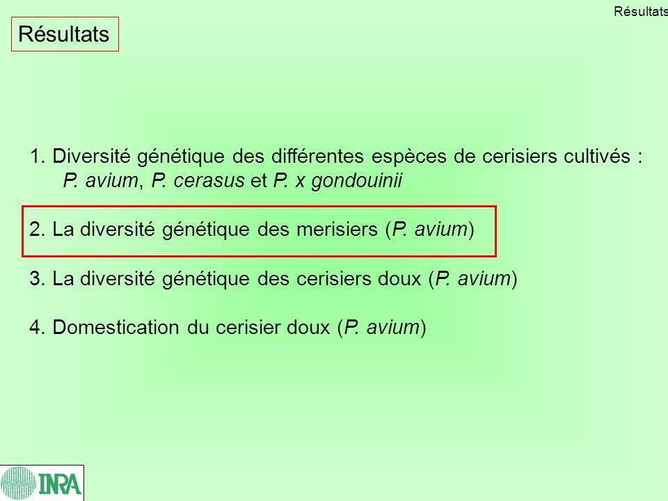 Résultats Résultats. 1. Diversité génétique des différentes espèces de cerisiers cultivés : P. avium, P. cerasus et P. x gondouinii.