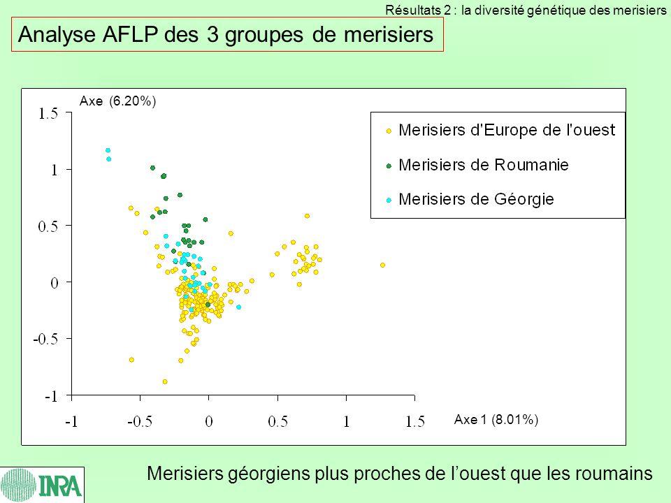 Analyse AFLP des 3 groupes de merisiers