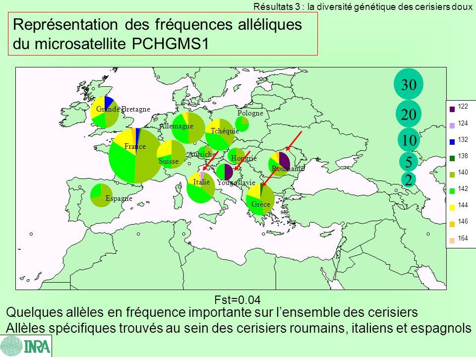 Représentation des fréquences alléliques du microsatellite PCHGMS1