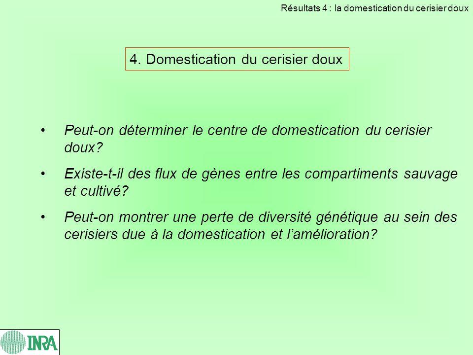 4. Domestication du cerisier doux