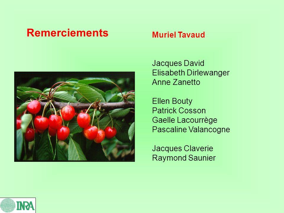 Remerciements Muriel Tavaud Jacques David Elisabeth Dirlewanger