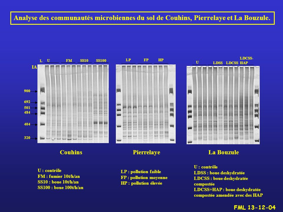 Analyse des communautés microbiennes du sol de Couhins, Pierrelaye et La Bouzule.