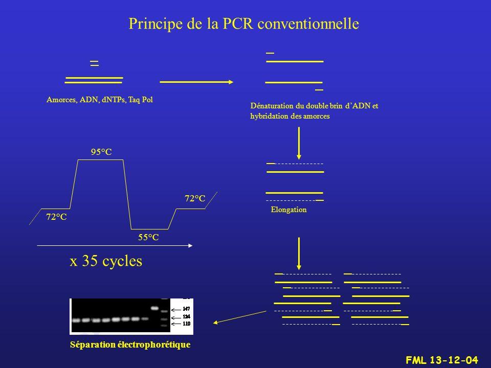 Principe de la PCR conventionnelle