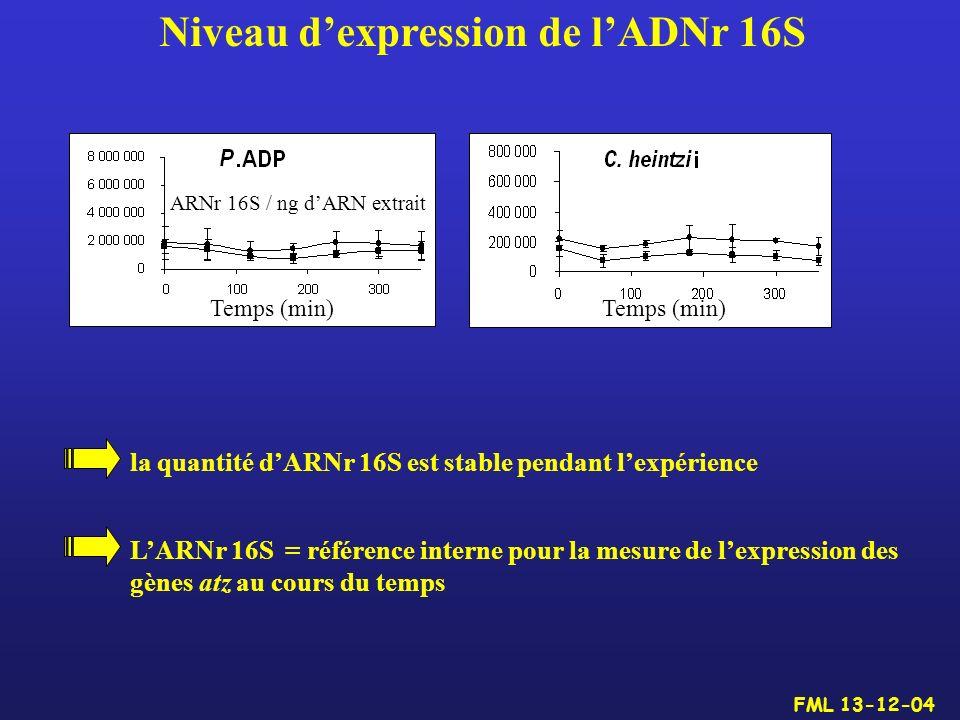 Niveau d'expression de l'ADNr 16S