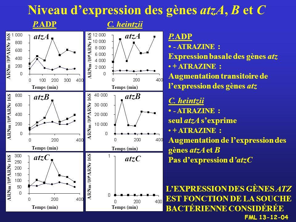 Niveau d'expression des gènes atzA, B et C
