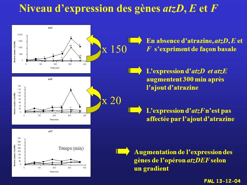 Niveau d'expression des gènes atzD, E et F