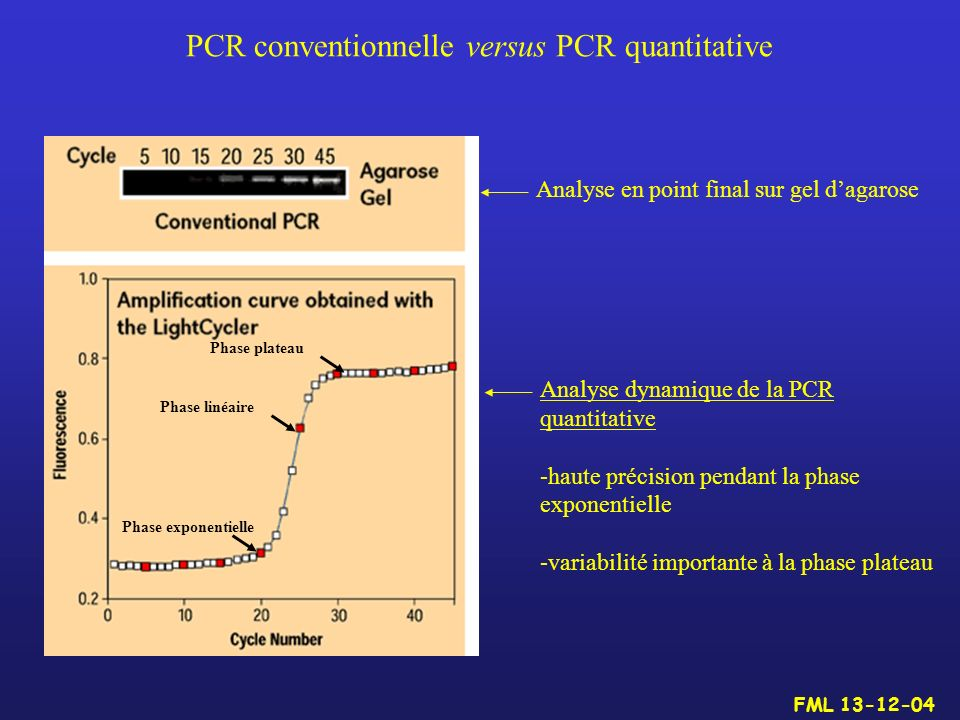 PCR conventionnelle versus PCR quantitative