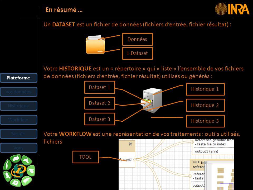 En résumé … Un DATASET est un fichier de données (fichiers d'entrée, fichier résultat) : Données. 1 Dataset.