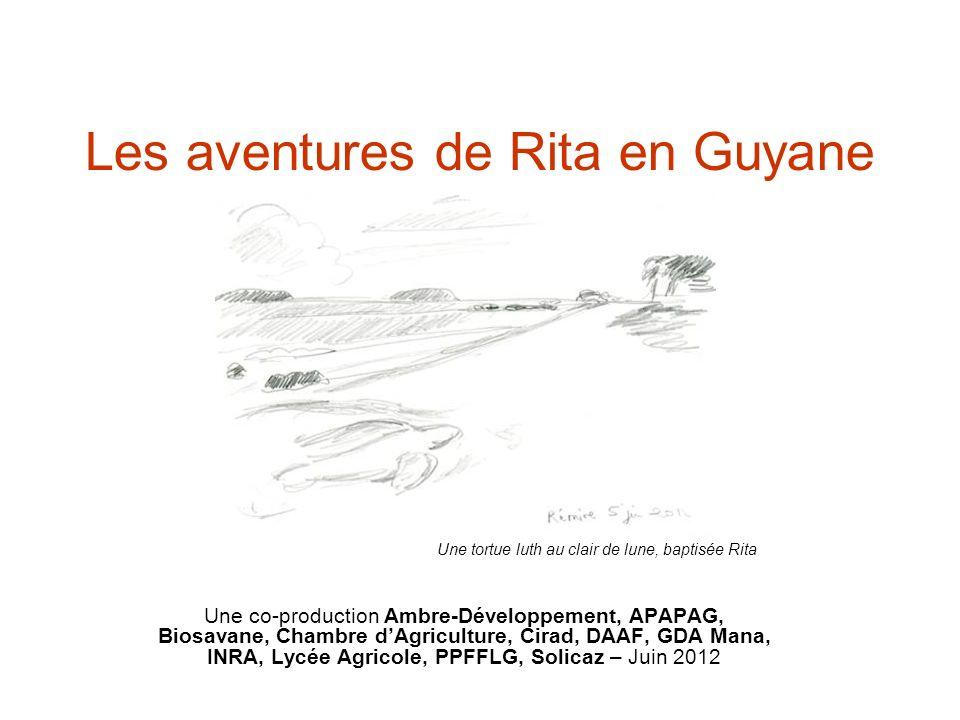 Les aventures de Rita en Guyane