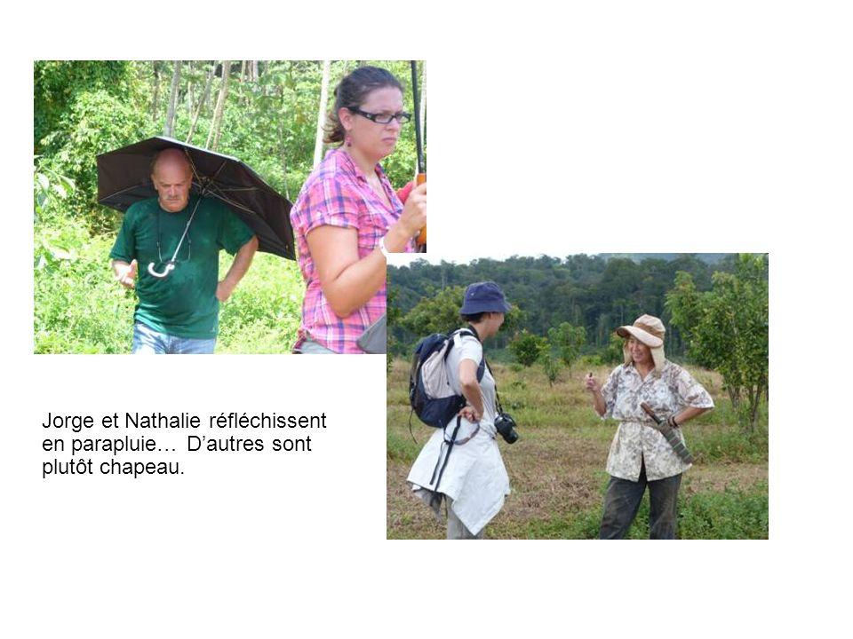 Jorge et Nathalie réfléchissent en parapluie… D'autres sont plutôt chapeau.