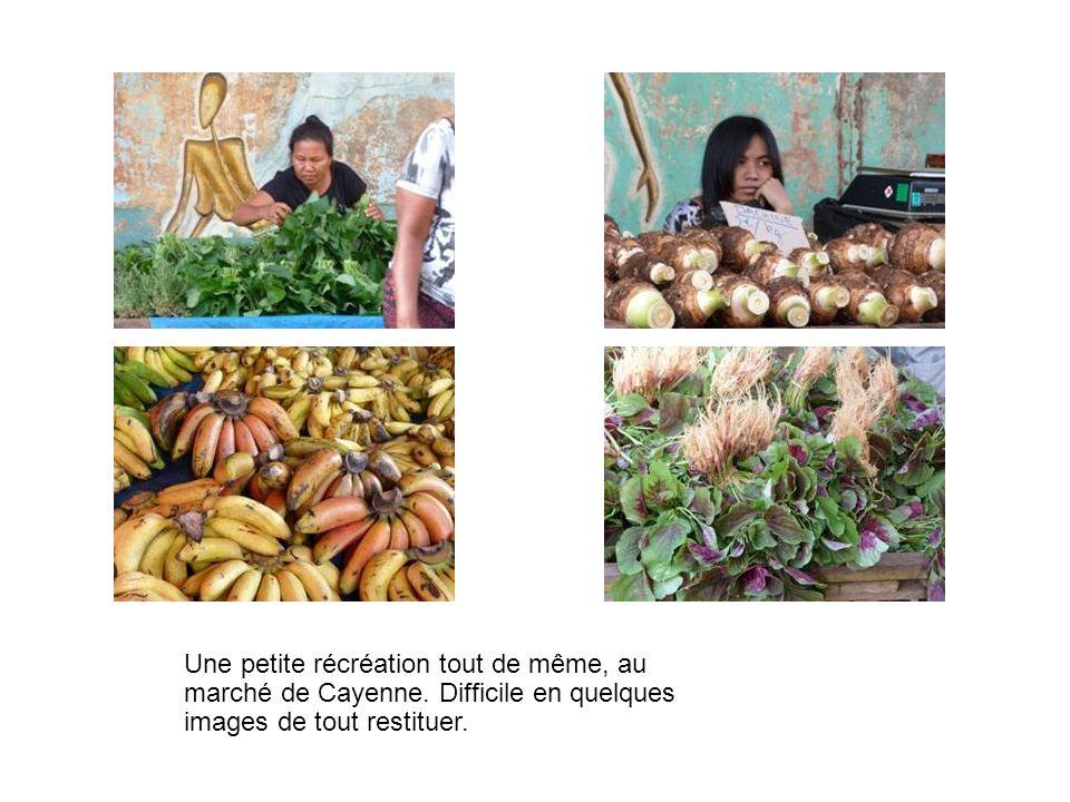 Une petite récréation tout de même, au marché de Cayenne