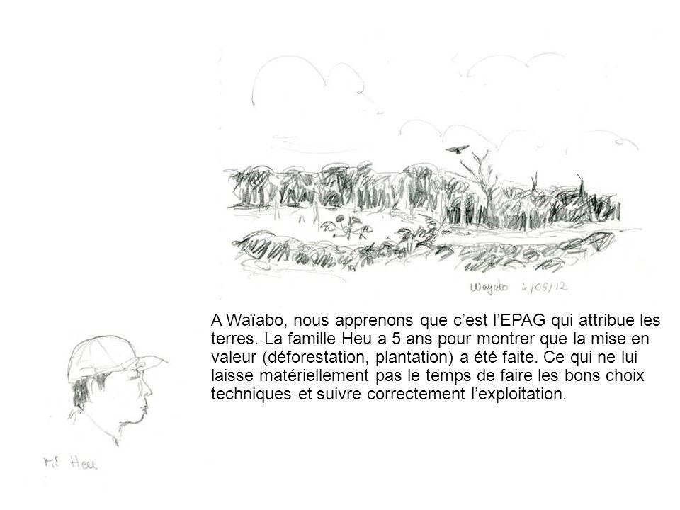A Waïabo, nous apprenons que c'est l'EPAG qui attribue les terres