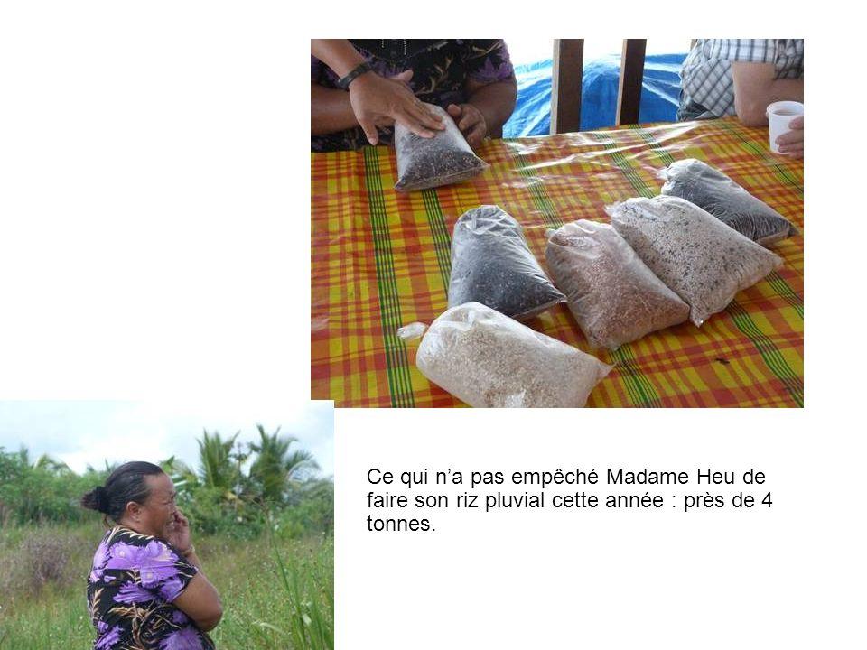 Ce qui n'a pas empêché Madame Heu de faire son riz pluvial cette année : près de 4 tonnes.