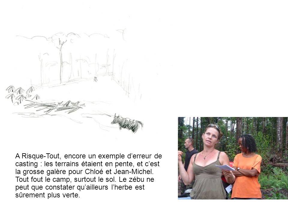 A Risque-Tout, encore un exemple d'erreur de casting : les terrains étaient en pente, et c'est la grosse galère pour Chloé et Jean-Michel.