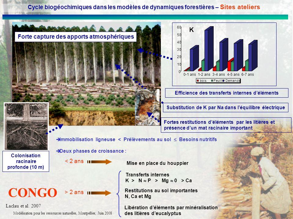 Cycle biogéochimiques dans les modèles de dynamiques forestières – Sites ateliers