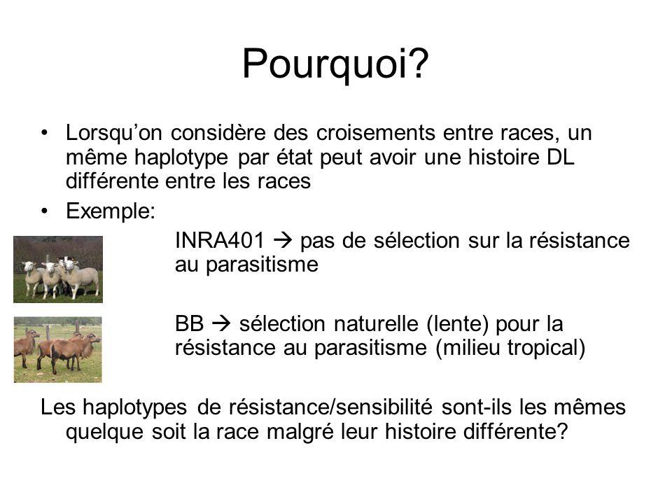 Pourquoi Lorsqu'on considère des croisements entre races, un même haplotype par état peut avoir une histoire DL différente entre les races.