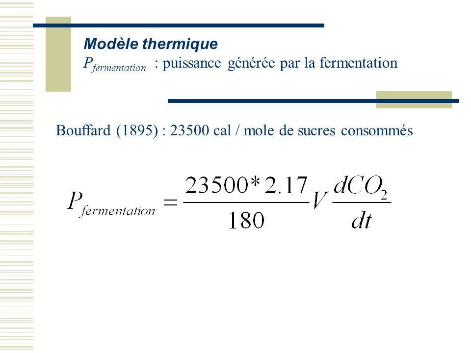 Modèle thermique Pfermentation : puissance générée par la fermentation.