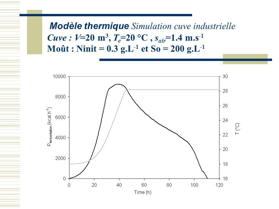 Modèle thermique Simulation cuve industrielle
