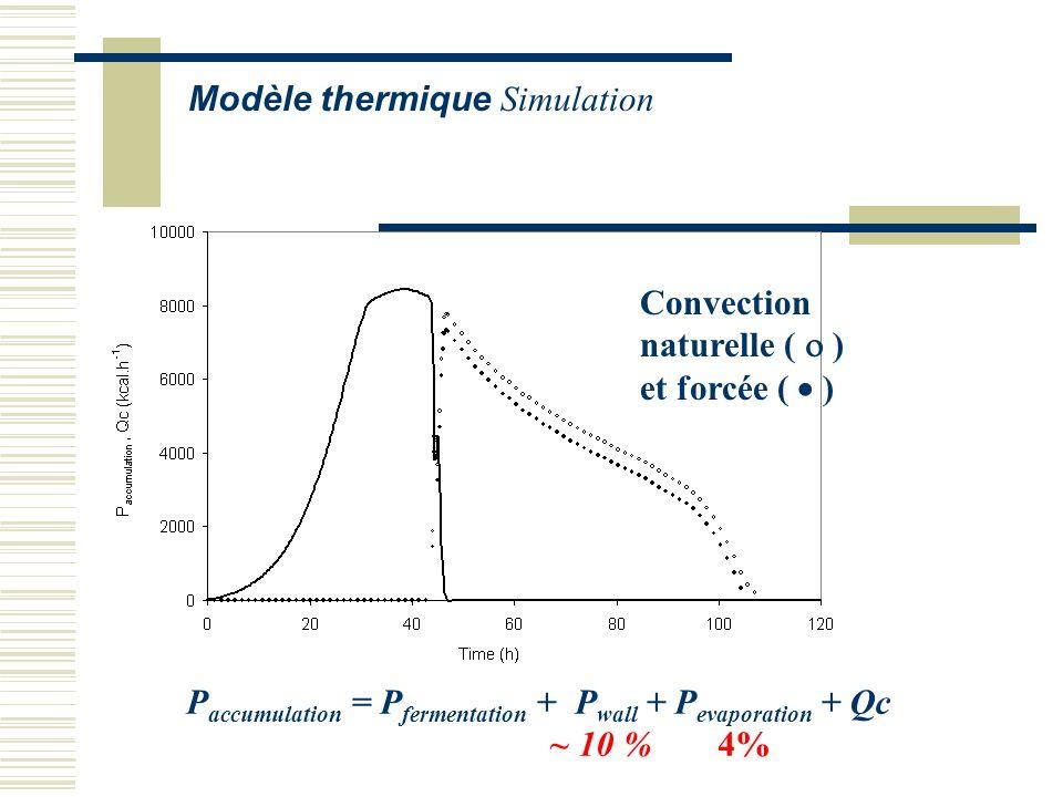 Modèle thermique Simulation