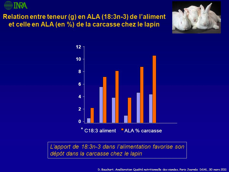 Relation entre teneur (g) en ALA (18:3n-3) de l'aliment et celle en ALA (en %) de la carcasse chez le lapin