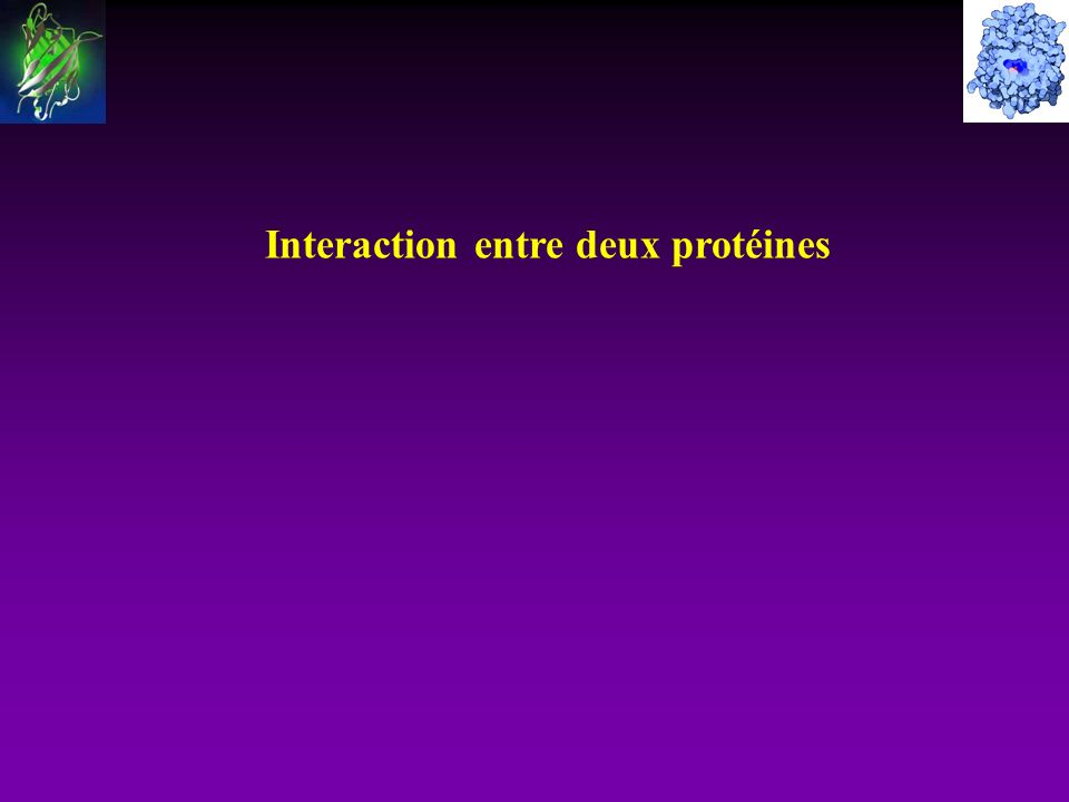 Interaction entre deux protéines
