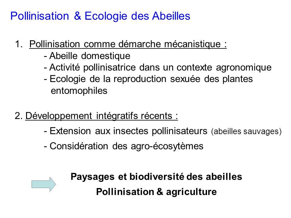 Paysages et biodiversité des abeilles Pollinisation & agriculture