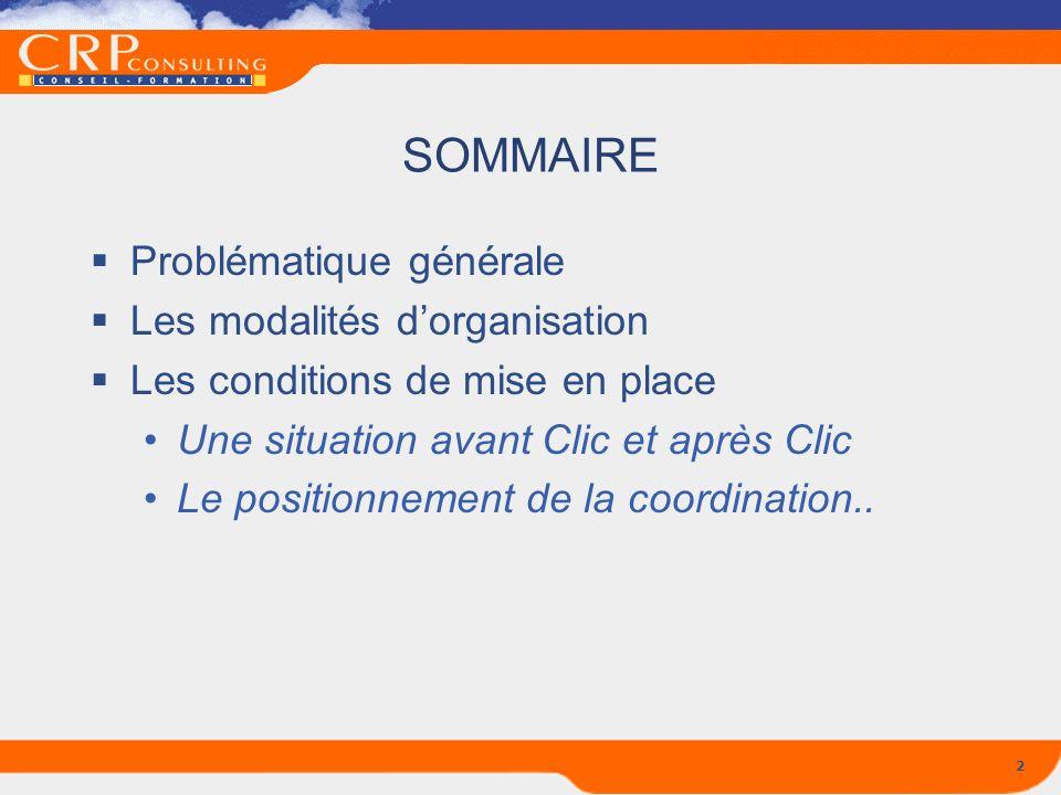 SOMMAIRE Problématique générale Les modalités d'organisation