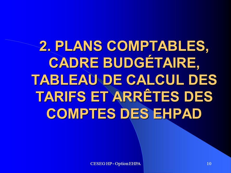 2. PLANS COMPTABLES, CADRE BUDGÉTAIRE, TABLEAU DE CALCUL DES TARIFS ET ARRÊTES DES COMPTES DES EHPAD