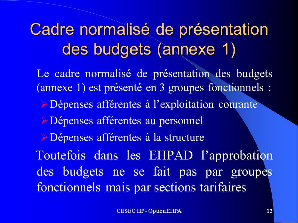 Cadre normalisé de présentation des budgets (annexe 1)