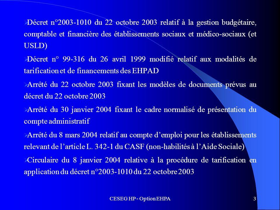 Décret n°2003-1010 du 22 octobre 2003 relatif à la gestion budgétaire, comptable et financière des établissements sociaux et médico-sociaux (et USLD)