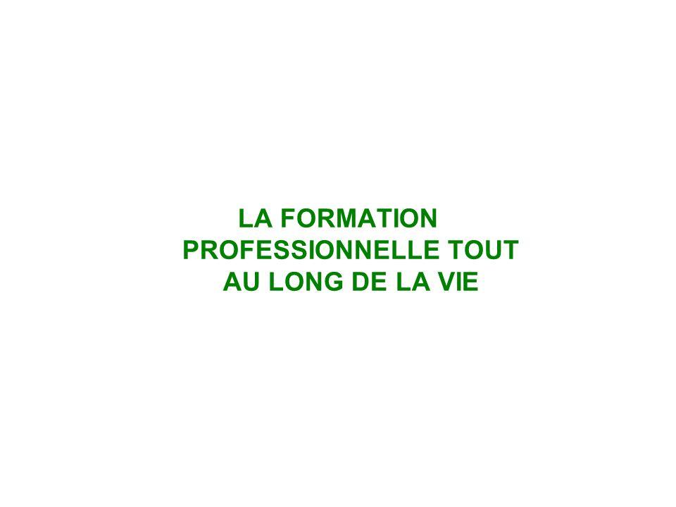LA FORMATION PROFESSIONNELLE TOUT AU LONG DE LA VIE