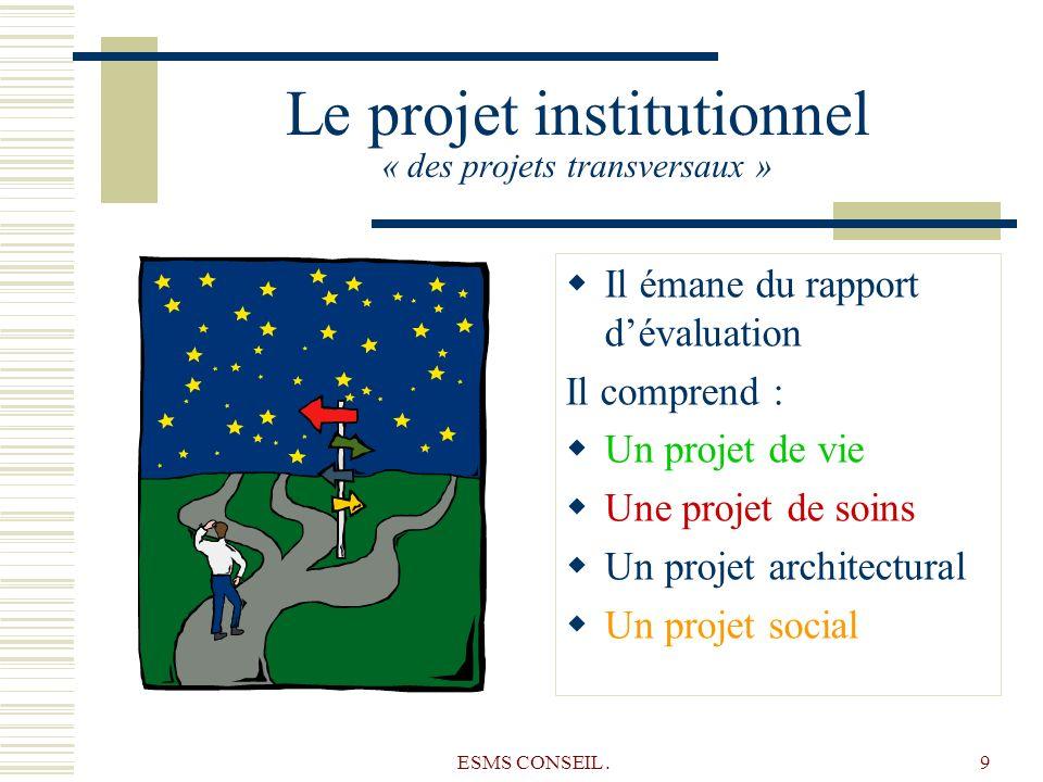 Le projet institutionnel « des projets transversaux »