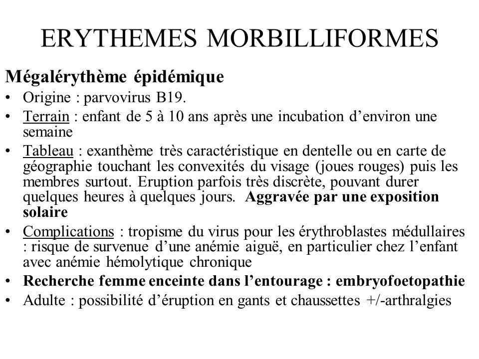 ERYTHEMES MORBILLIFORMES