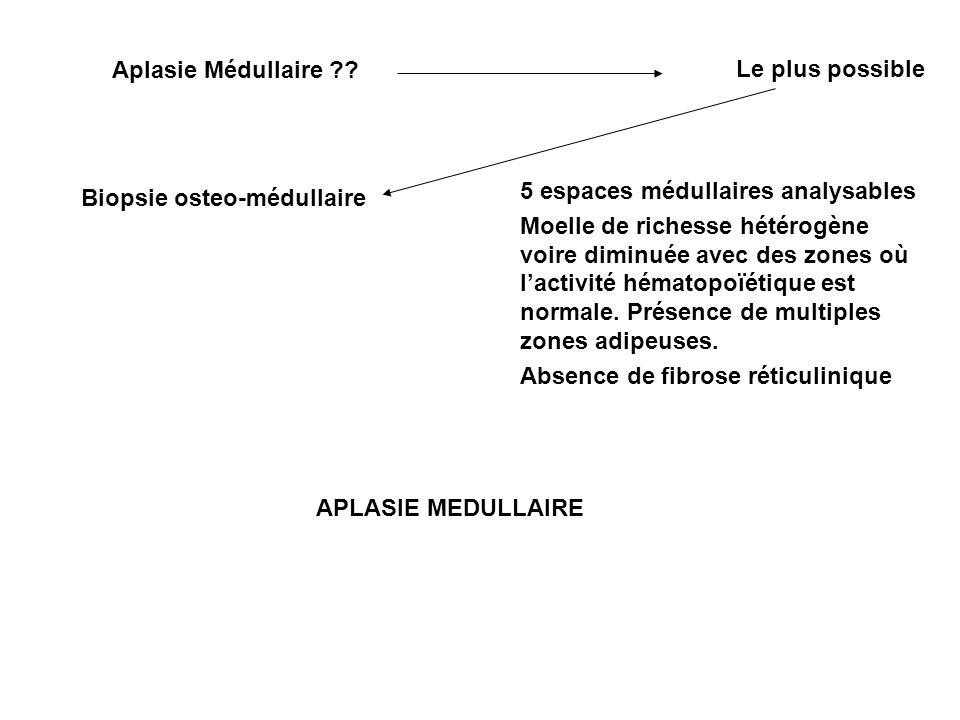 Aplasie Médullaire Le plus possible. 5 espaces médullaires analysables.