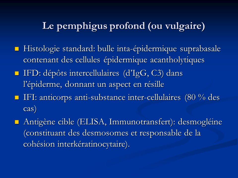 Le pemphigus profond (ou vulgaire)