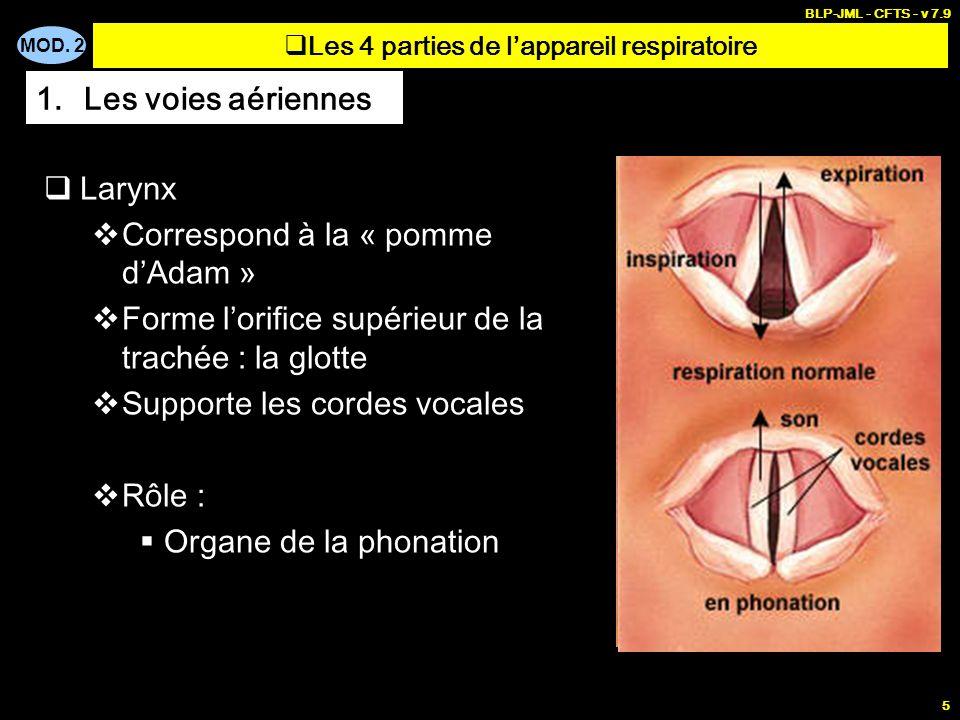 Les 4 parties de l'appareil respiratoire