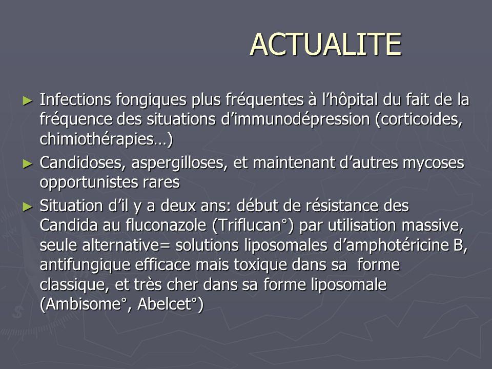 ACTUALITE Infections fongiques plus fréquentes à l'hôpital du fait de la fréquence des situations d'immunodépression (corticoides, chimiothérapies…)
