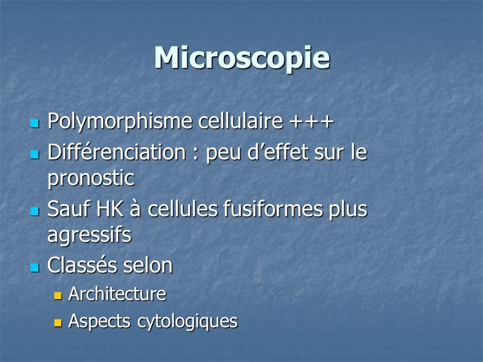 Microscopie Polymorphisme cellulaire +++